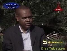 Interview with Dr. Abera T/Mariyam