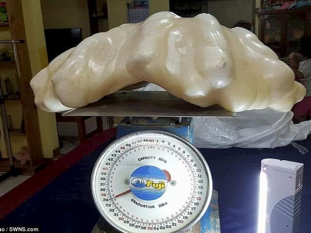 Filipino Fisherman Kept a $100mln Dollar worth Pearl...
