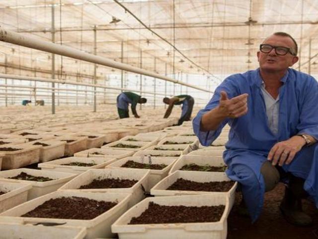Community Elders: Burning a Flower Farm will not Cha...