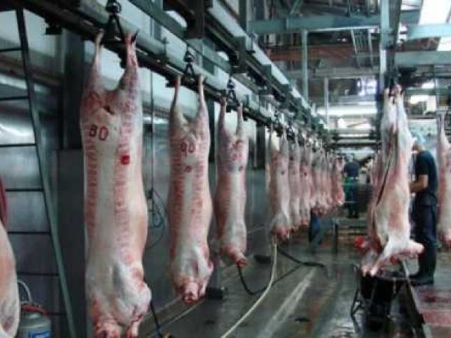 Addis Ababa to get 4 bln birr modern abattoir