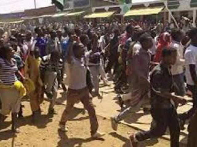 Part II: The Oromo Protest and a counter-protest state