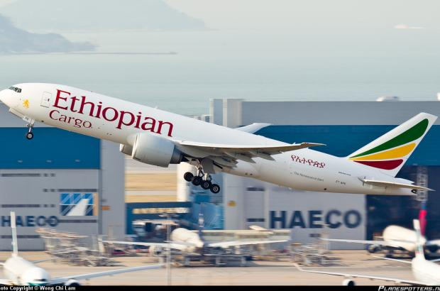 Ethiopian Airlines Named Best African Cargo Airline of the Year