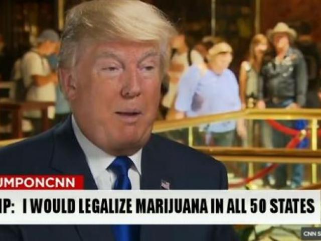 Trump: I Will Legalize Marijuana in All 50 States