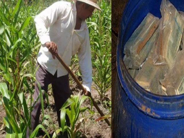 Colombian Farmer Finds U.S. $600,000,000 mln Cash of...