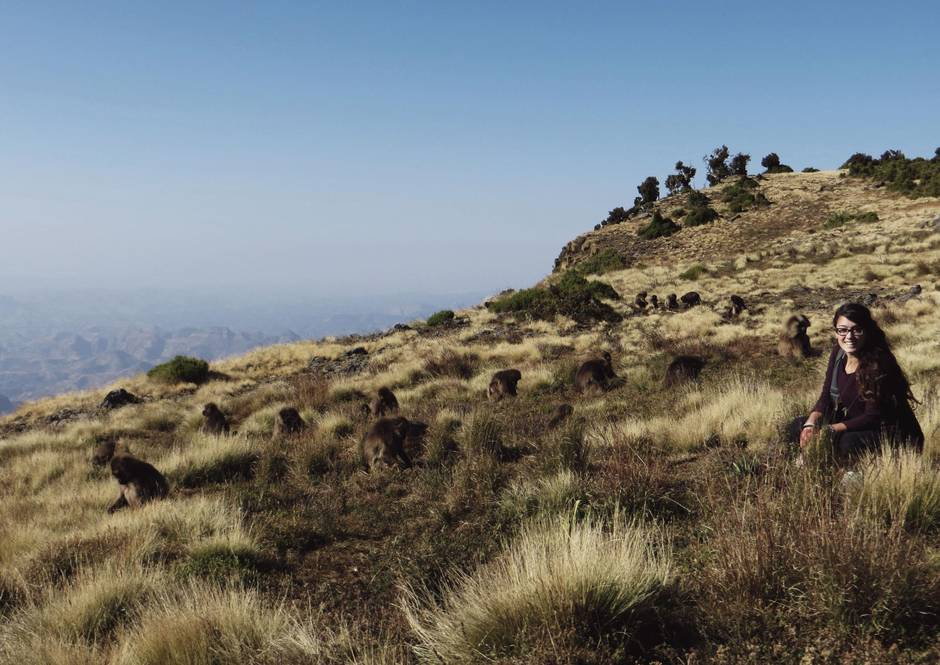 Simien Mountains Becomes Cost Effective for Climbers