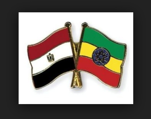 Egypt's Food Exports to Ethiopia Hit $10.4 million in 11 Months