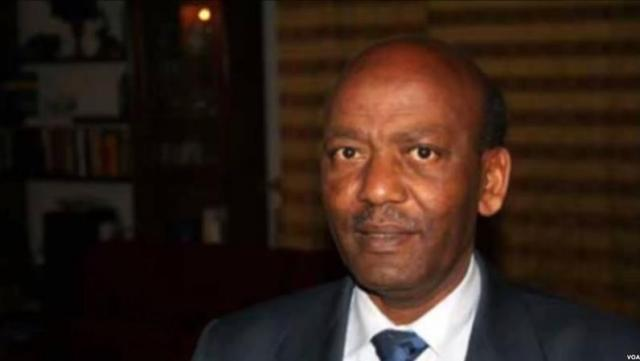 Ethiopia: Former president of Ethiopia Dr. Negasso Gidada speaks about current situation