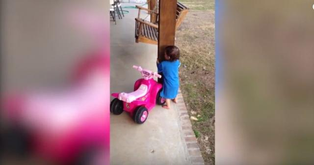 Cutest Funny Kids & Baby Videos of 2016 Weekly Compilation