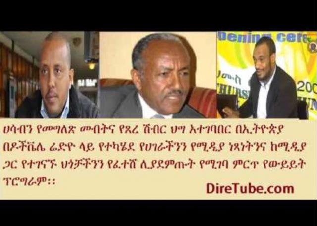 DW Amharic - Interview with Ato Getachew Reda, Dr. Yakob and Ato Temam on Zone 9 Bloggers Release