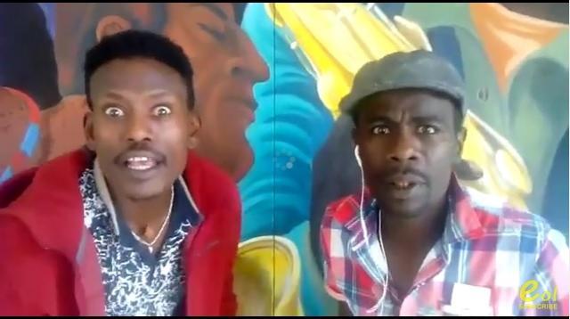 Ethiopian Comedians Bini Dana and Tare 80 Concert in Washington, DC