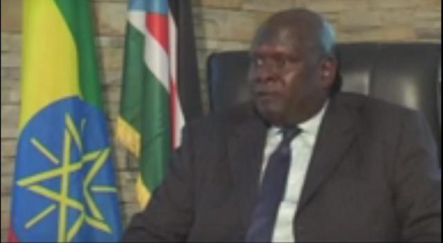 Interview with South Sudanese Ambassador to Ethiopia on Current Issues