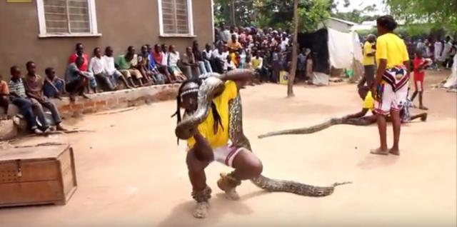 African Dance with Snake (Tanzania): Amazing Video