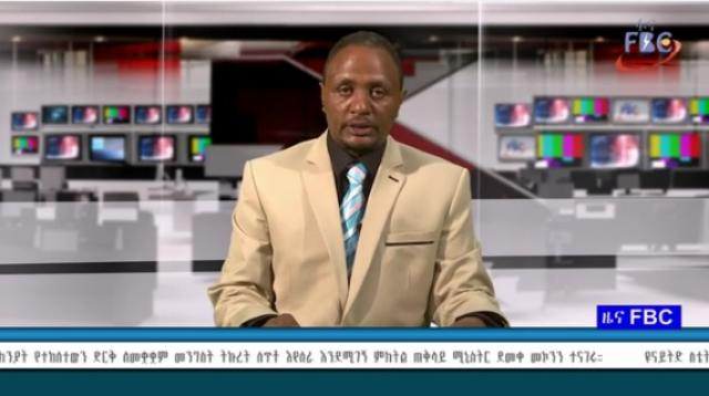 Ethiopian News from Fana Broadcasting November 11, 2015