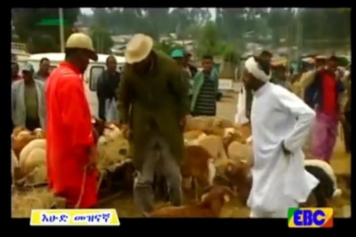 Zenk - Short funny Ethiopian drama