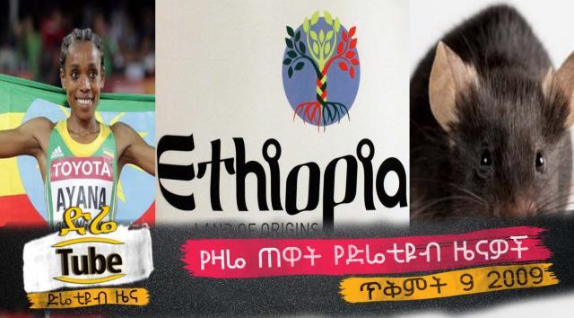 Ethiopia - Latest Morning News From DireTube Oct 19, 2016