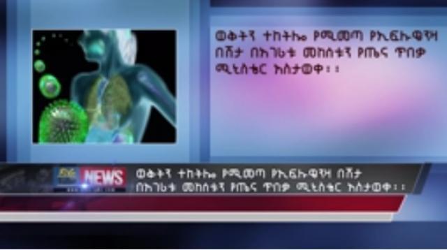 Seasonal influenza occurs in Ethiopia, Ministry
