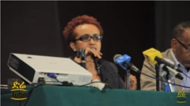 Ginbot 20 Panel Discussion with Ethiopian Journalists