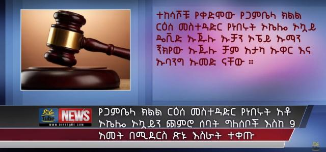 Former president of Gambela region and 7 others sentenced for 9 years