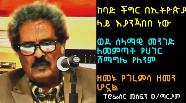 "Ethiopia: ""civil war is possible"" Professor Mesfin Weldemariam"