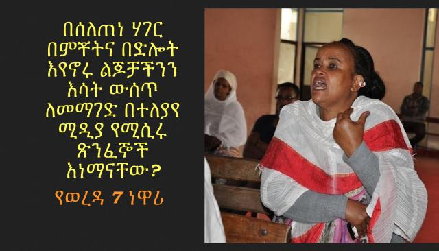 Ethiopian Mom Speaks about the Current issue at a Public Meeting