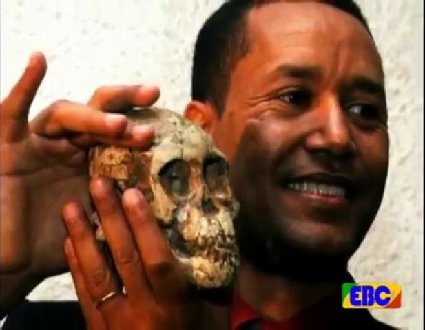 """EBC Documentary - The Father of """"Selam"""": a Child of human ancestors"""