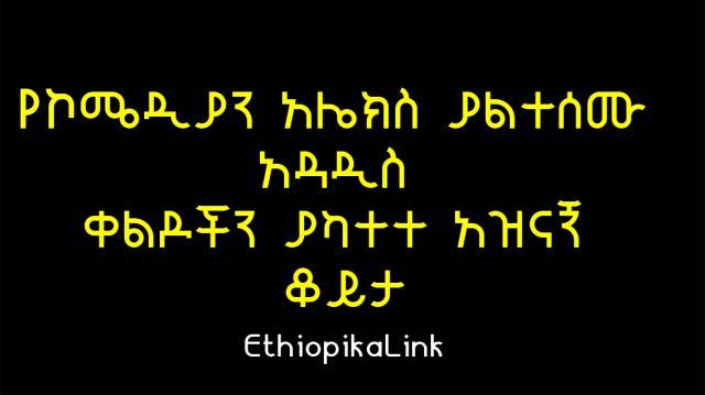 Interview with Comedian Alemayehu Getachew /Alex/, EthiopikaLink
