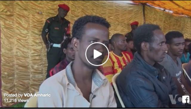 VOA News: Sudan arrests 190 illegal immigrants on borders with Libya