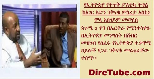 Prof. Berhanu Nega Interview with VOA about united movement of armed groups