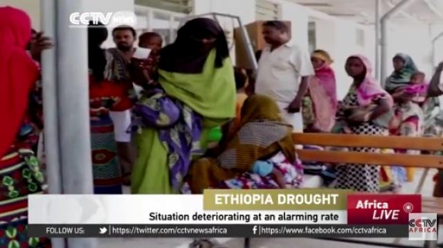 Ethiopia's drought situation deteriorating at an alarming rate