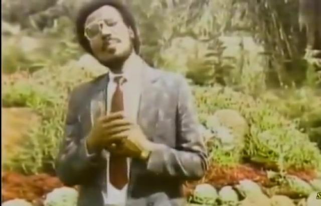 Gashaw Adal : Anchi Lij Min Yibka - Ethiopian Oldies
