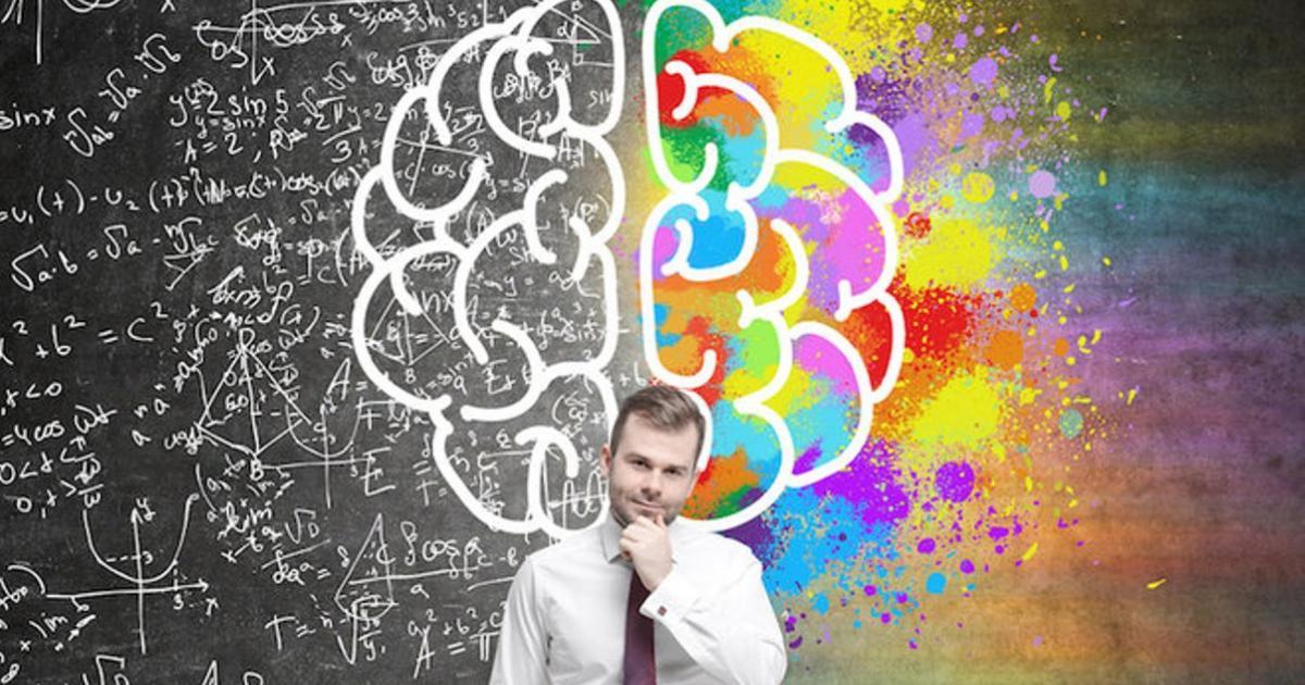 Why Your Brain Has 2 Halves