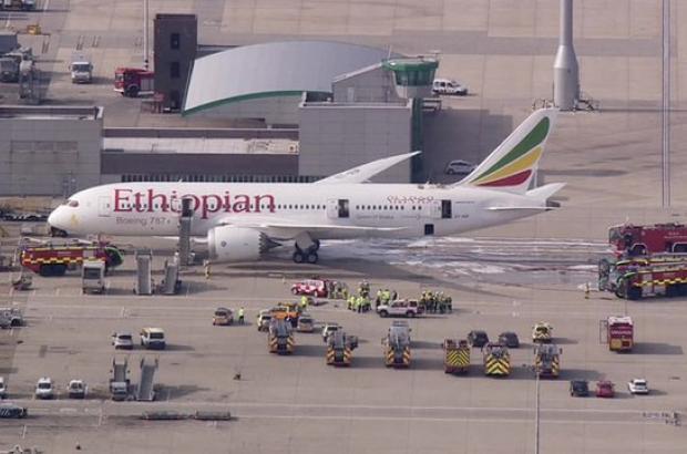 Plane hijacker Co-pilot Hailemedhin Abera sentenced to psychiatric care