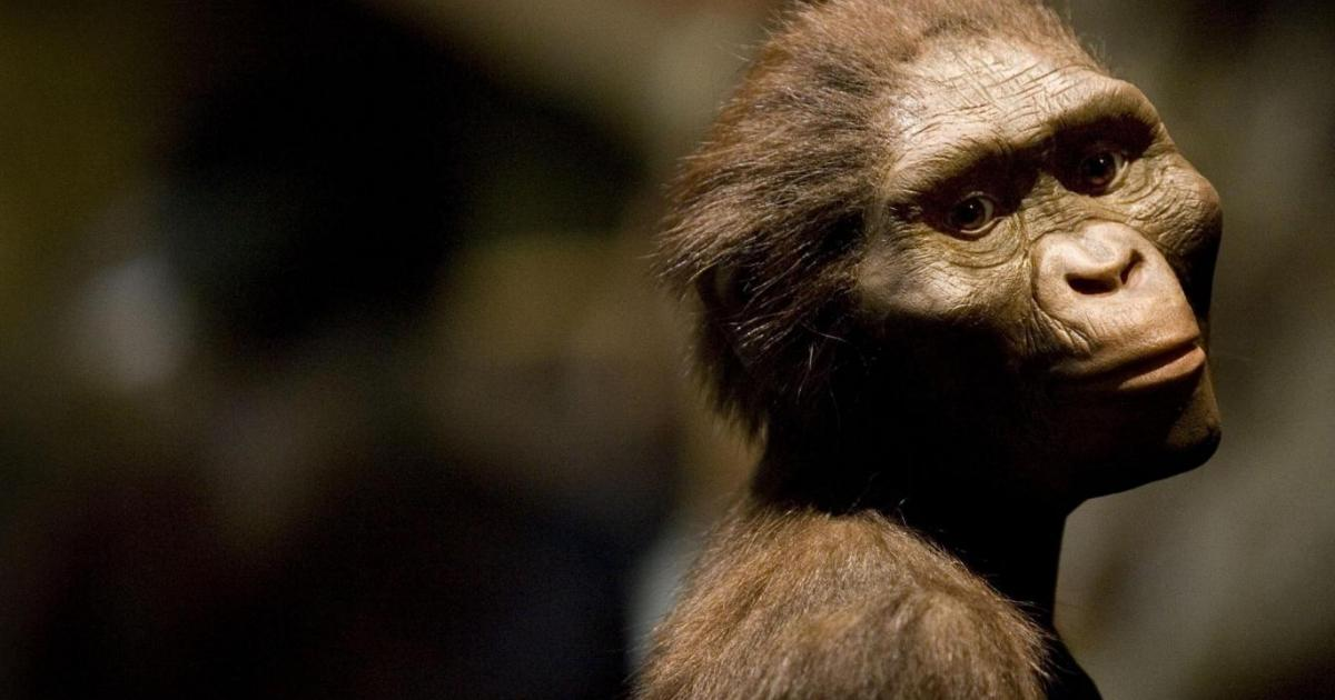 Humans came from Africa may be wrong, claims controversial new study
