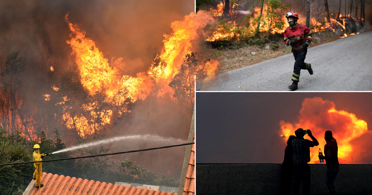 Portugal forest fires: Three days of mourning for 62 victims