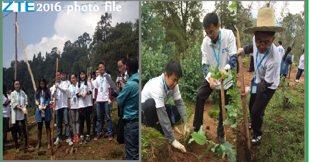 ZTE Ethiopia Considers Planting Trees at Gulelle District