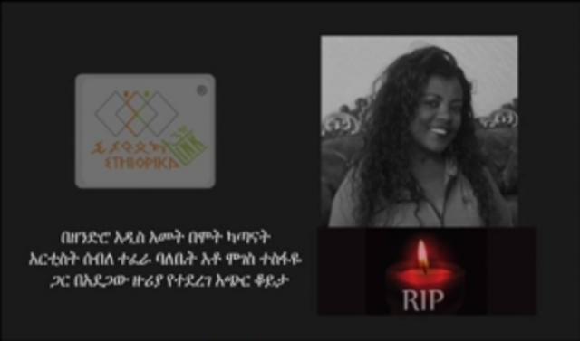 EthiopikaLink Interview With Ato Moges Tesfaye (Artist Seble Tefera's husband)