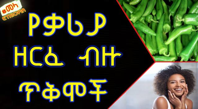 Ethiopia - Diffrent Benefites of Green Chili For your Health | የቃሪያ ጥቅም