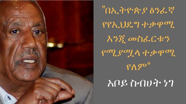 ETHIOPIA - Aboy Sibehat Nega Talks about Current Politics and the Opposition