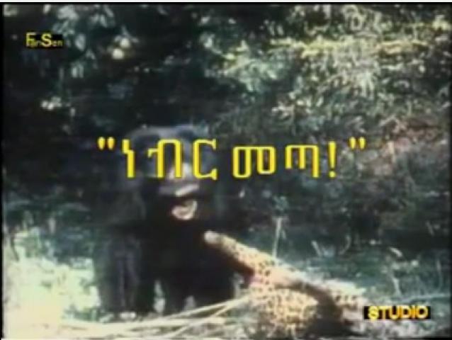 Tagel Seifu Nebr Meta (ነብር መጣ) funny Ethiopian poem