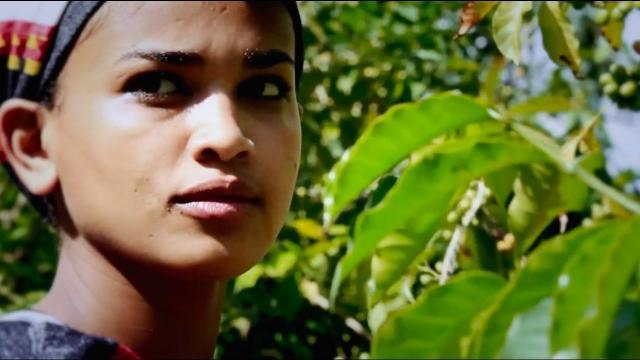 Alemu Ayesa - Wike (ዋይኬ) [NEW! Ethiopian Music Video 2017]
