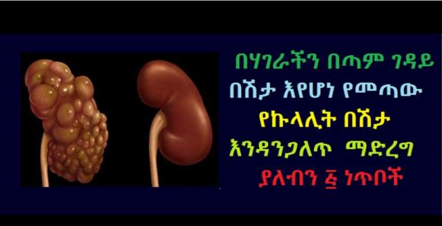 5 things we should do to Prevent Kidney Disease