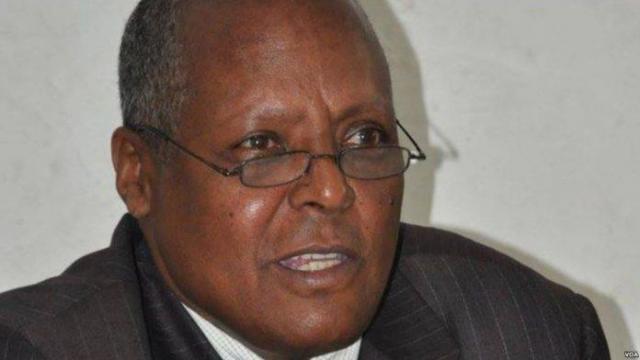 ETHIOPIA - Dr.Birhanu nega Jawar Mohamed Charged by Ethiopia gov't