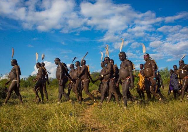 Ka'el Ceremony Of Bodi Tribes - Omo River valley, Ethiopia |