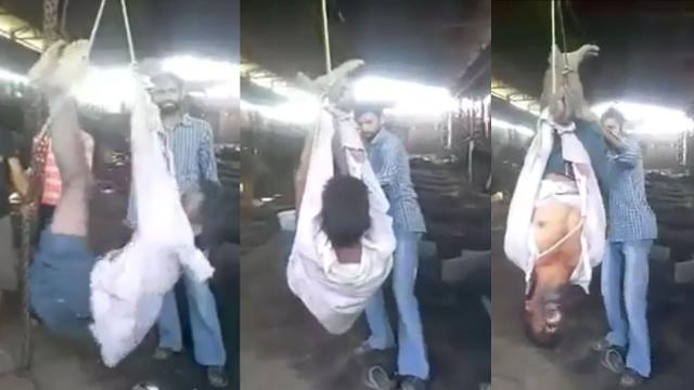 Horrible bosses: Migrant worker dies after being strung up by boss; Death by overwork - Compilation