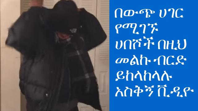 Funny Habesha Videos (Habeshas Reaction when it's Cold)